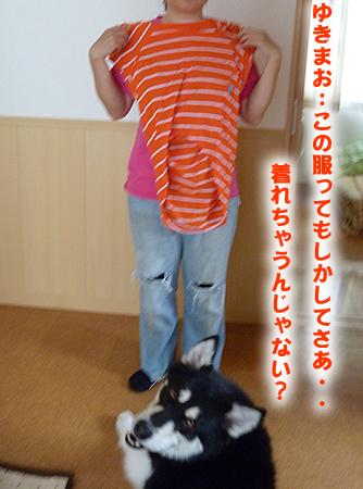 犬服を着る01.jpg