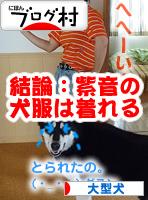 犬服を着る05.jpg