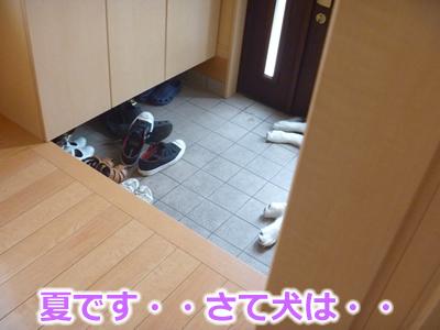 玄関01.jpg