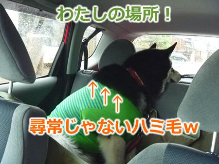 糸魚川1日目03.jpg