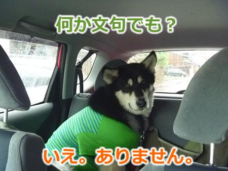 糸魚川1日目04.jpg