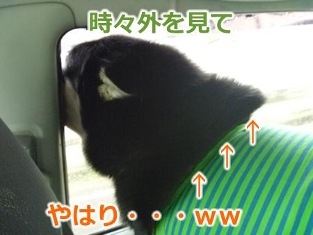 糸魚川1日目05.jpg