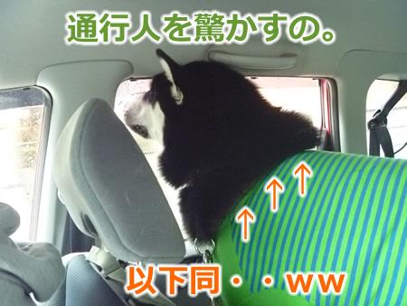 糸魚川1日目06.jpg