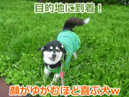 糸魚川1日目07.jpg