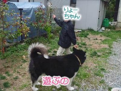 花見鳥屋野潟16.jpg