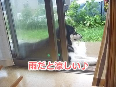 雨縁側02.jpg