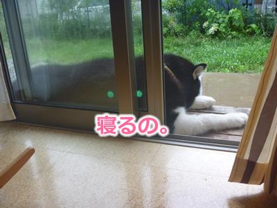雨縁側04.jpg
