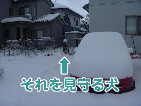 雪かき03.jpg
