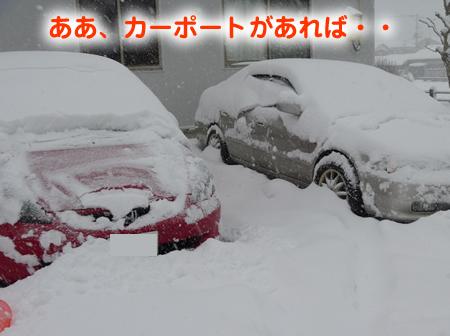 雪に埋まる車01.jpg