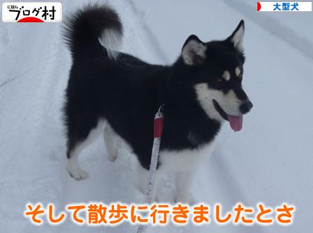 雪の散歩201202.jpg