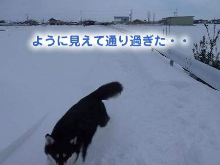 雪道06.jpg