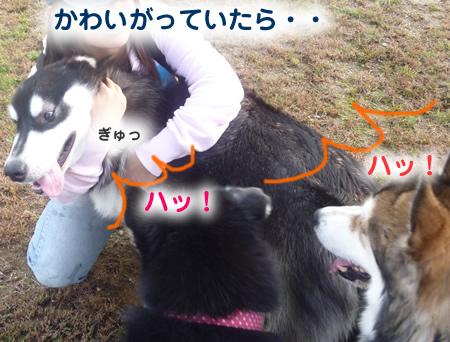 雷蔵02.jpg
