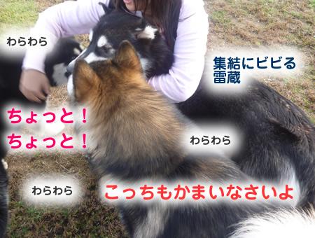 雷蔵03.jpg