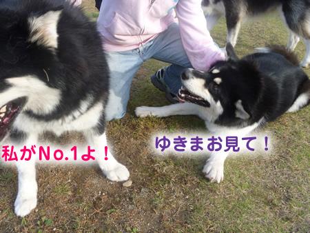 雷蔵06.jpg