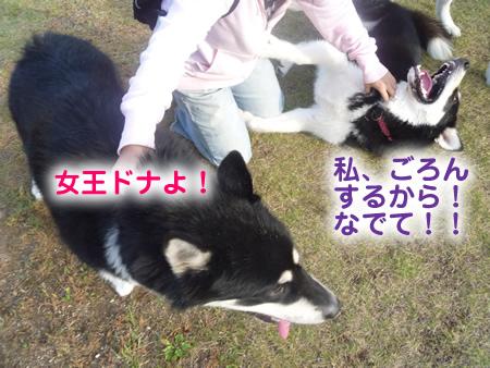 雷蔵07.jpg