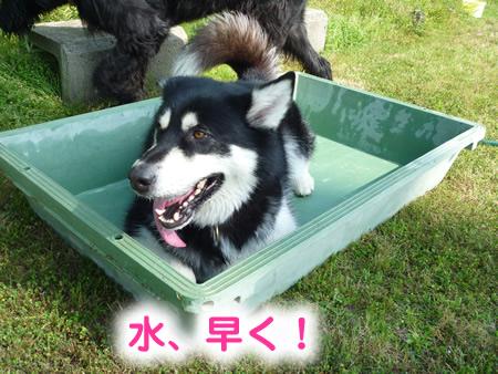 風呂05.jpg