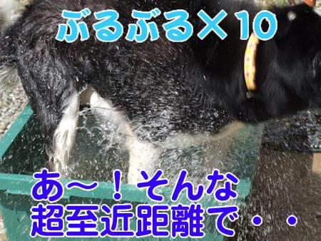 シャワー08.jpg