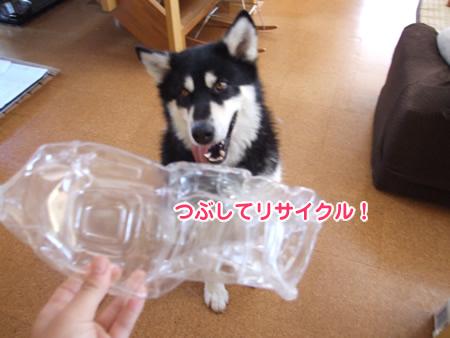リサイクル08.jpg