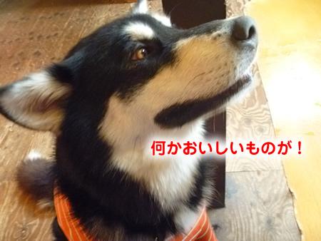 三鬼遊09.jpg