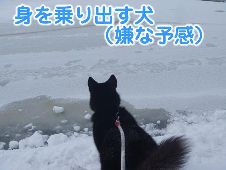 春分の日05.jpg