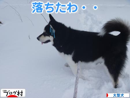 春分の日09.jpg