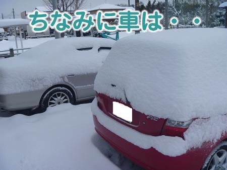 雪かき01.jpg