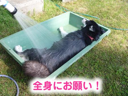 風呂08.jpg